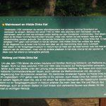 Gemeente Ameland - Hollum